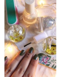 Daisy Cuticle Nail Oil